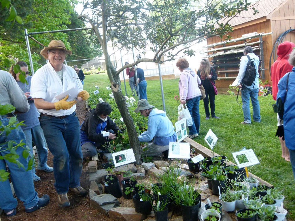 Alan Ford assists customers in choosing the RIGHT native plant!