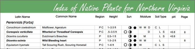 Plant List b
