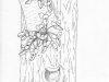cercis-trunk_art-1