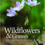 Virginia native plants, native plant books, native grasses, native wildflowers