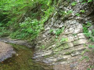 Little Patterson Creek