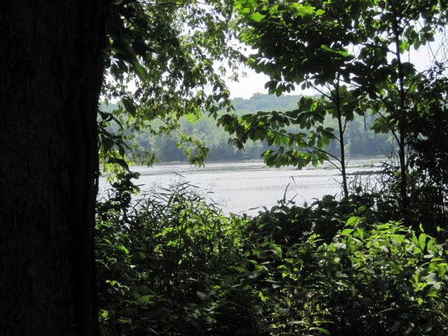 Riverbend Park on the Potomac River.   Photo credit: Margaret Chatham