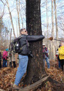 VNPS member Cliff Gay and new State Champion Black Maple, (Acer nigrum) at Ferry Hill