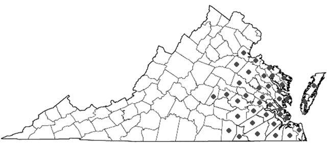 clethra map