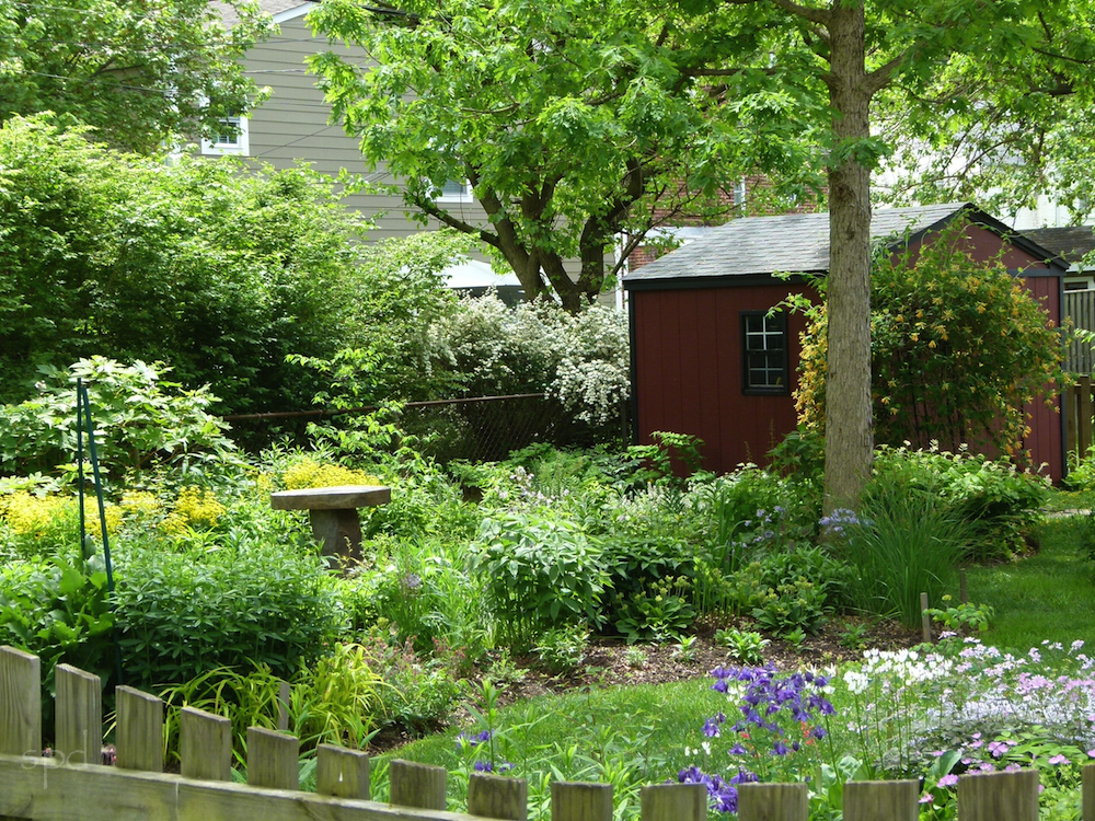 """Your yard is like Yellowstone to a bee!"" Home of Susan and Jim Graham, on the VNPS garden tour this spring."