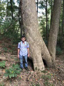 Author with MD State Cucumber tree, (Magnolia acuminata)