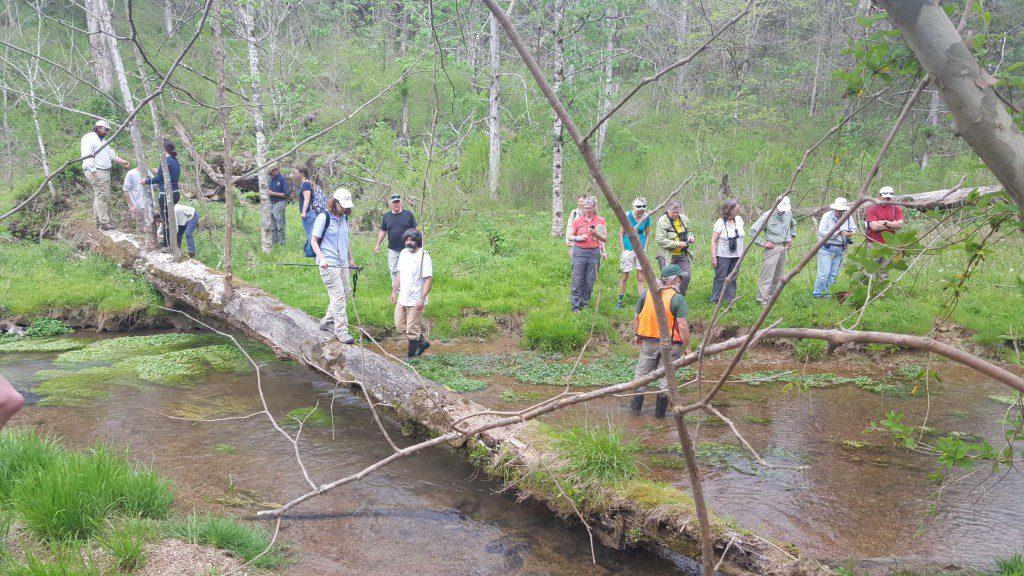 Cedars Appreciation Group at River
