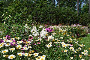 Williamsburg Botanical Garden (Virginia.org)
