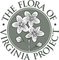 Flora of Virginia Logo