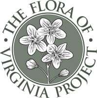 Flora of Virginia Logo