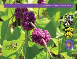 Native Plants of the Northern Neck