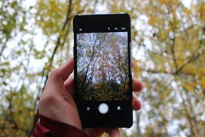Camera Phone with Hand and Trees by Linus Schutz from Pixabay