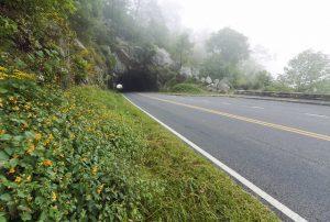 Shenandoah National Park Tunnel Overlook by National Park Service - N. Lewis