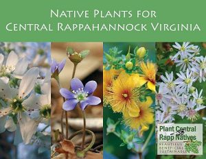 Native Plants for Central Rappahannock Virginia Cover