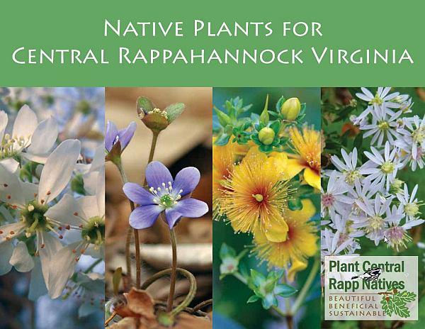 Virginia Native Plant Guides - Virginia Native Plant Society