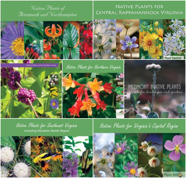 Native Plant Guides Collage