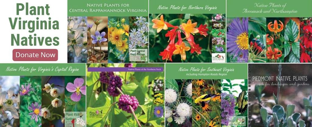 Plant Virginia Natives 2019-2020 Plant Guides Fundraiser Home Page Slider