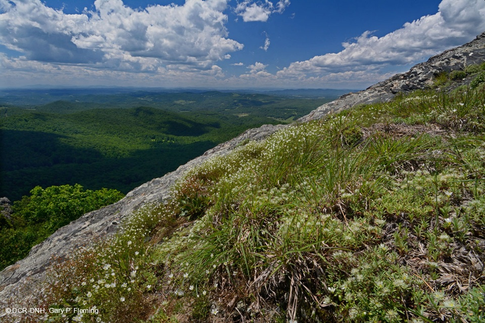 Natural Area Preserves Fund